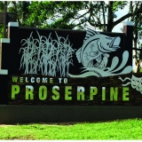 Welcome to proserpine - Tropical Designs