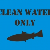 CLEAN WATE ONLY-fish