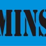 MINS serif