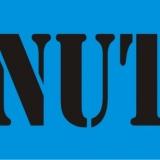 MINUTE serif